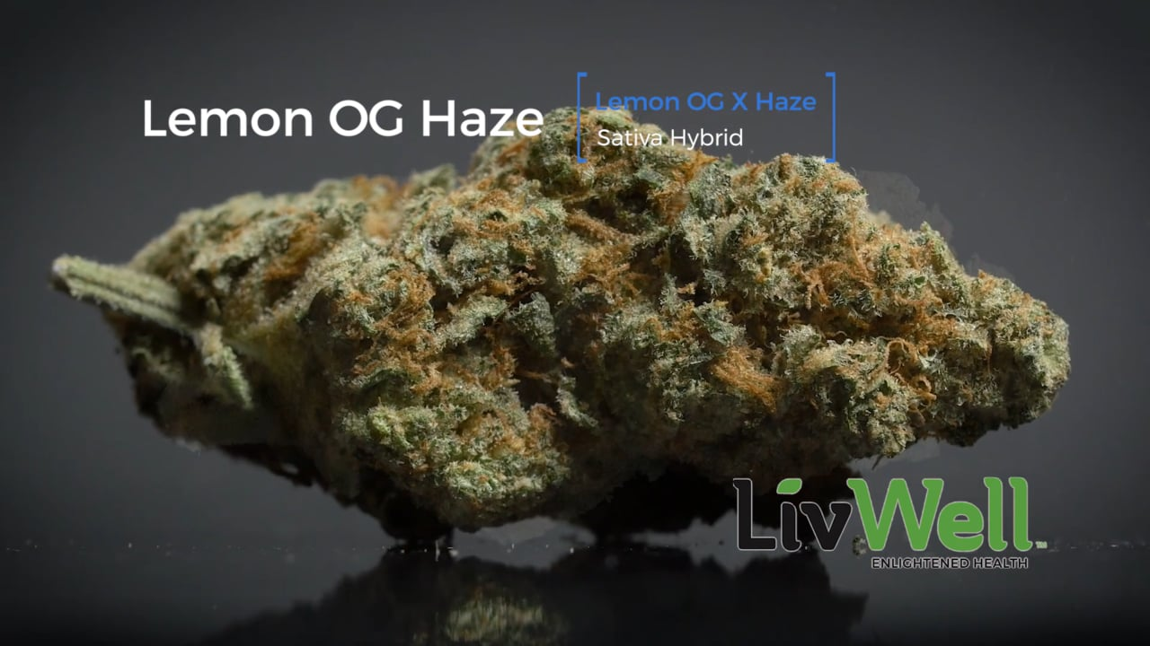 Lemon OG Haze Strain Review
